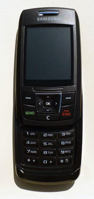 Samsung_T301G_front_open